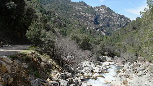 Sendero Río Borosa en la Sierra de Cazorla